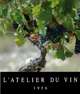 Ustensiles de cuisine MaSpatule - Nouvelle marque l'atelier du vin